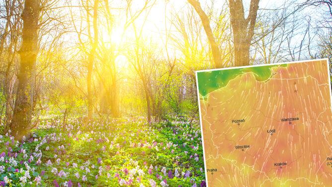 Wiosna zostanie i po weekendzie. Będzie ciepło, ale może popadać i zagrzmieć