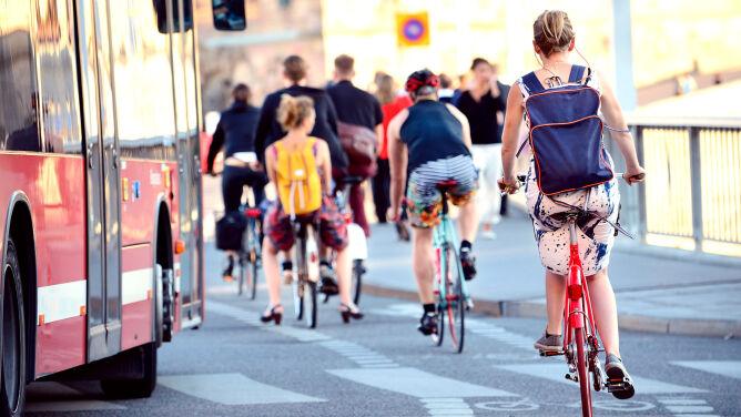 Alkohol, dzieci, przyczepka. 3 pytania rowerzystów