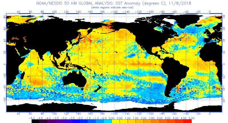 Odchylenie od średniej temperatury powierzchni oceanu na dzień 8 listopada według NOAA