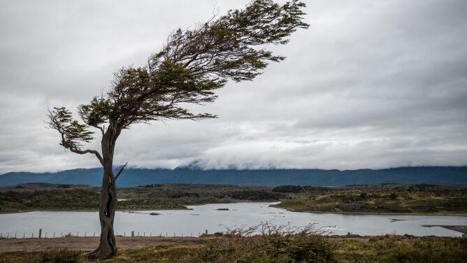 Pogoda na dziś: porywisty wiatr <br />w górach, do 17 stopni