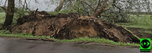 Połamane drzewa, grad i deszcz. Burze na zdjęciach Reporterów 24